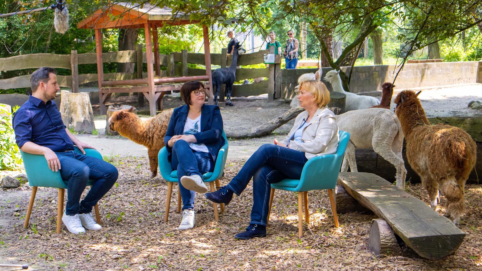 Videopodcast zur Umgestaltung des Tierparks